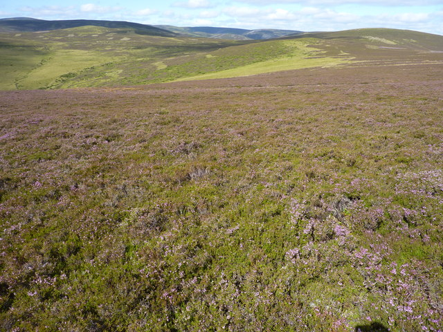 Moorland around the headwaters of the Burn of Relaquheim