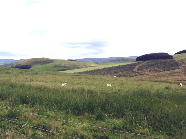 A semi moorland scene west of Nickie's Ha'