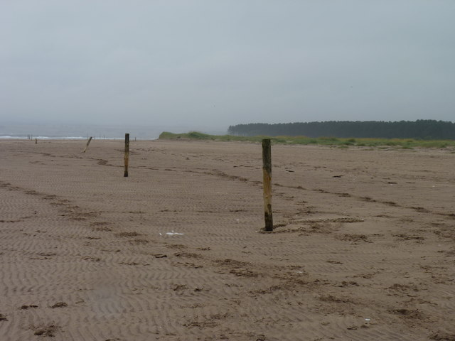 Poles on the beach