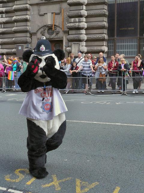 Manchester Pride - Constable Cub