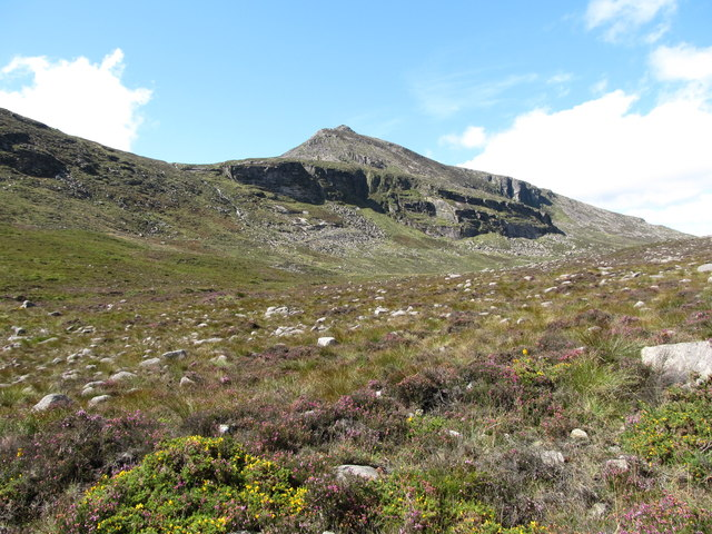 Moorland vegetation below Blue Lough Buttress