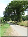 TL9276 : Country Lane by Keith Evans