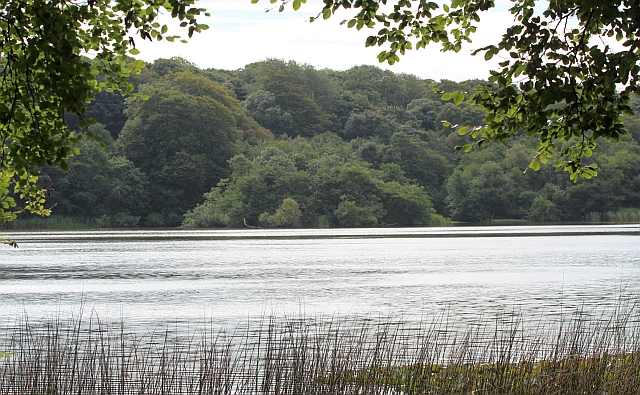 Crannog, White Loch of Myrton