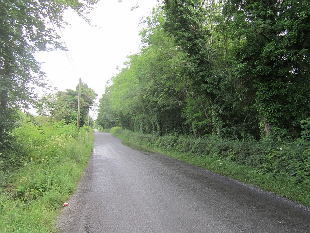 Local road, Crumlin