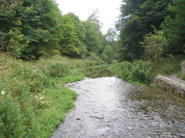 River Bradford from the footbridge