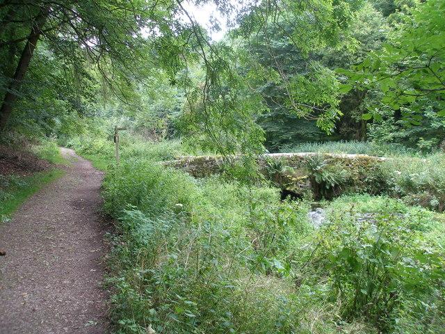 Bridge over the River Bradford below Moatlow Wood