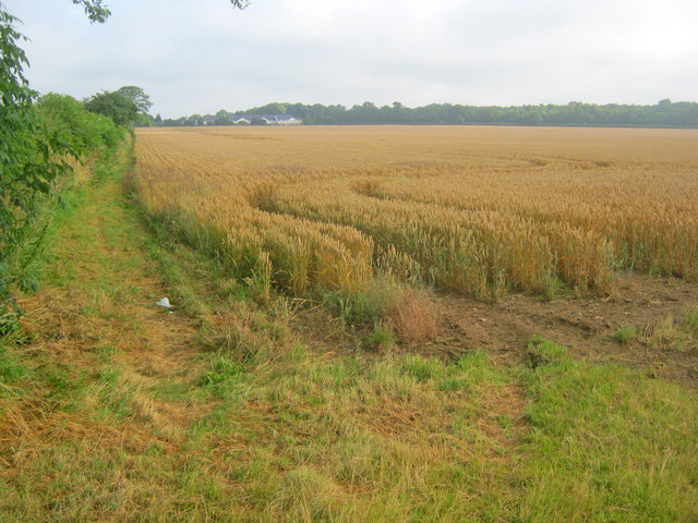 Arable land at Canwick Heath