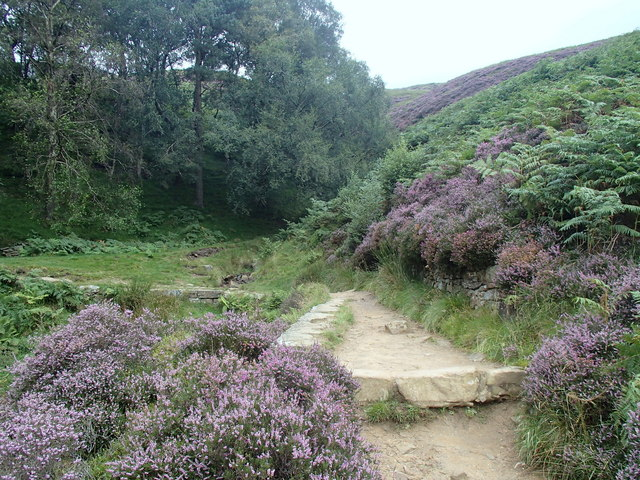 Grindsbrook Clough footpath