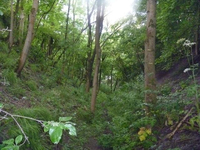 Down the escarpment
