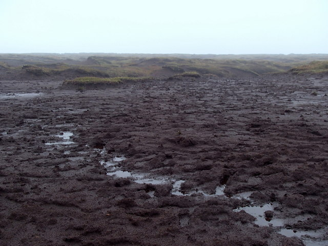 Peaty plateau near Crowden Head