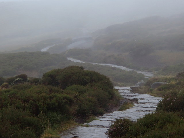 Moorland path in misty conditions