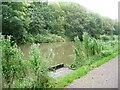 SK3872 : Angler's platform number 8, on the Chesterfield Canal by Christine Johnstone