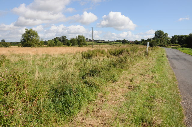 Honeymoor Common