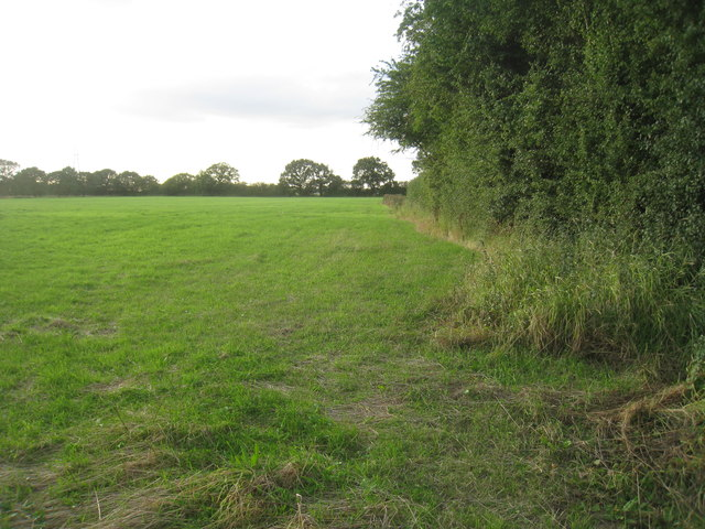 Field near Fenwick Grange