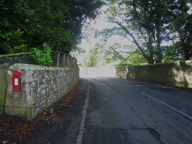 Road to Alnwick, near Abbeylands