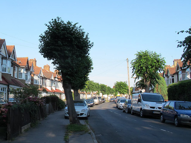 Limes Avenue, Waddon