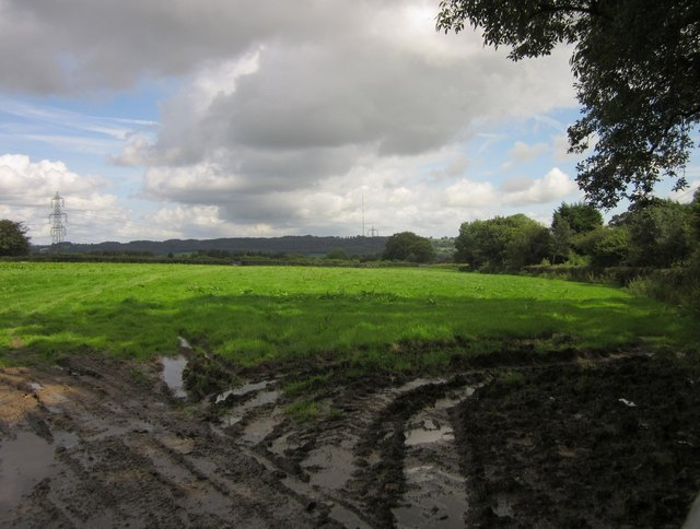 Field by Northgate Lane