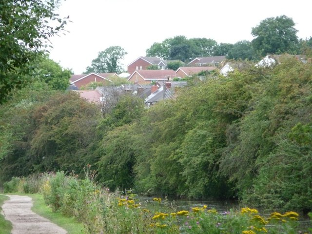 Houses along Windmill Way