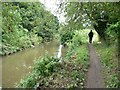 SK3871 : Walker by the River Rother / Chesterfield Canal by Christine Johnstone