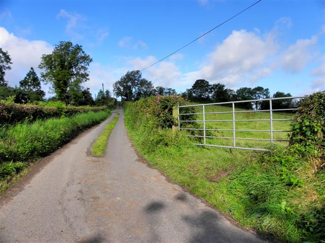 Road at Corranewy