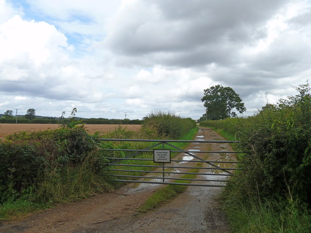 Track to the farm