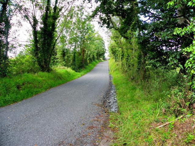 Road at Lismagonway