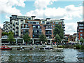 TQ1769 : By the river, Kingston upon Thames by Robin Webster