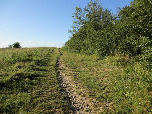 Track to Hangleton Lane