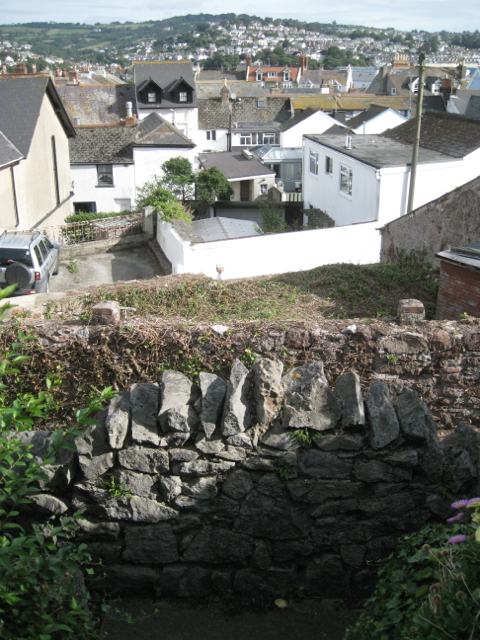 View north across Shaldon from the Homeyards