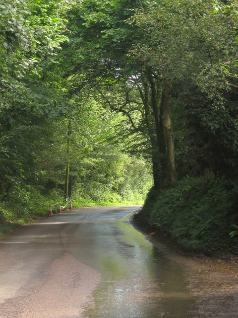 Road past Cuzziecombe