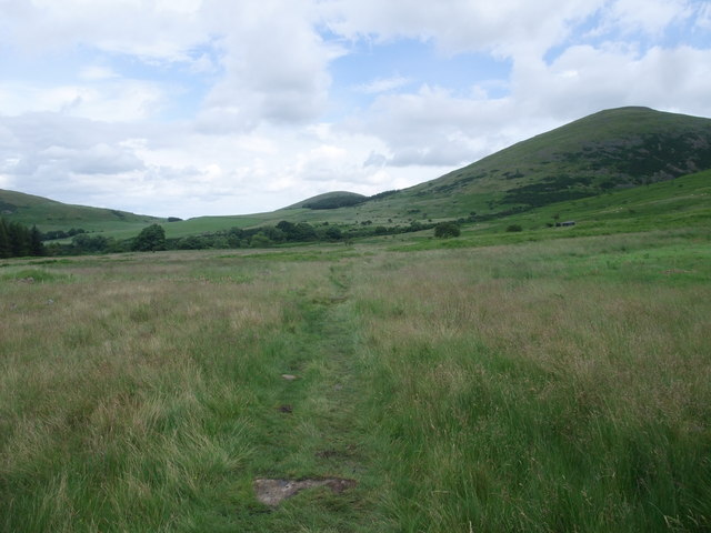 St Cuthbert's Way heading east along the College Valley