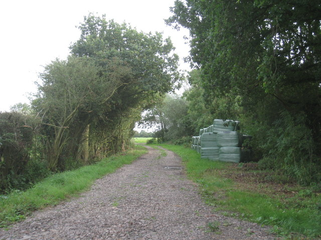 Farm track opposite Chapel Row, Sykehouse