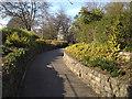 SP3165 : Ramp up to York Promenade by Robin Stott