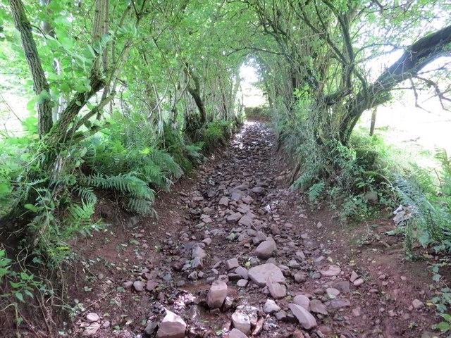 Cilffordd Llywel Byway