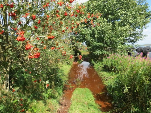 Hen heol i Lywel / Old road to LLywel