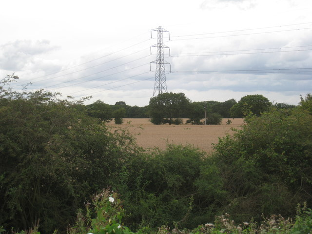 Wheatfields and pylon