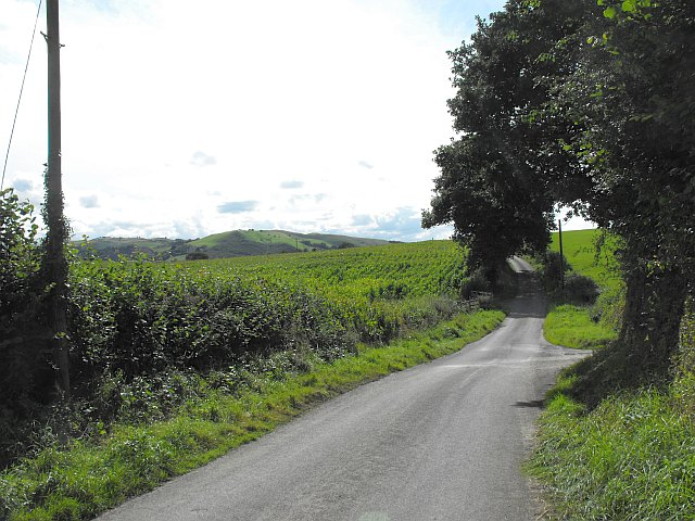 The road to Aberhafesb near Rhyd-y-felin