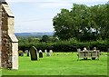 TQ6245 : Tudeley churchyard, Kent (2) by nick macneill