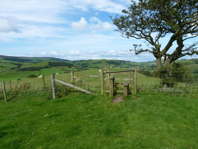 Stile and tree on Adstone Hill