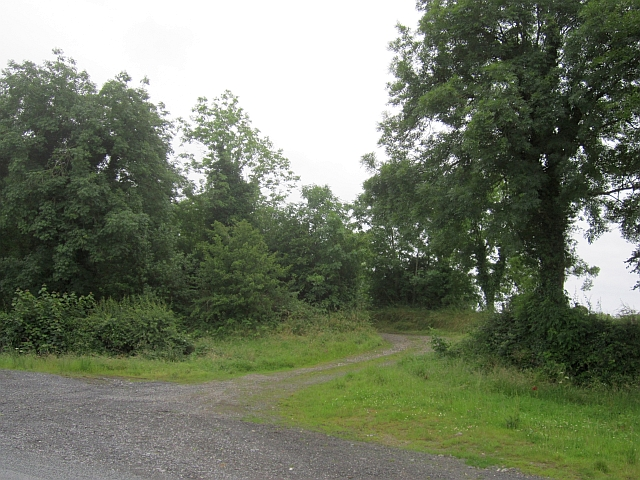 A farm road, Sallymount
