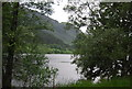 NN5810 : Loch Lubnaig through the trees by Nigel Chadwick