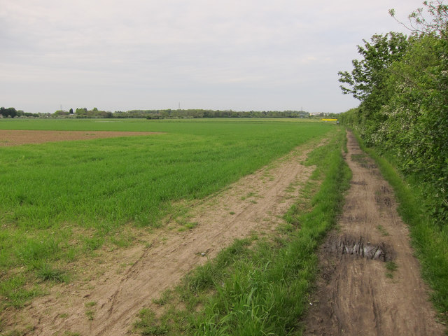 Footpath past NIAB site