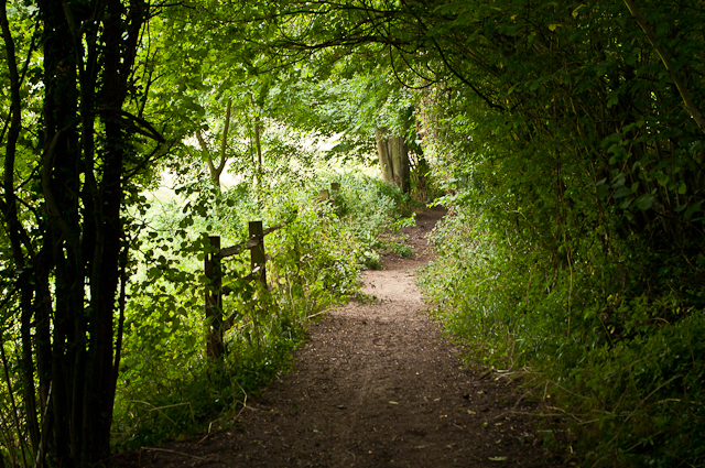 Path off Snag Lane