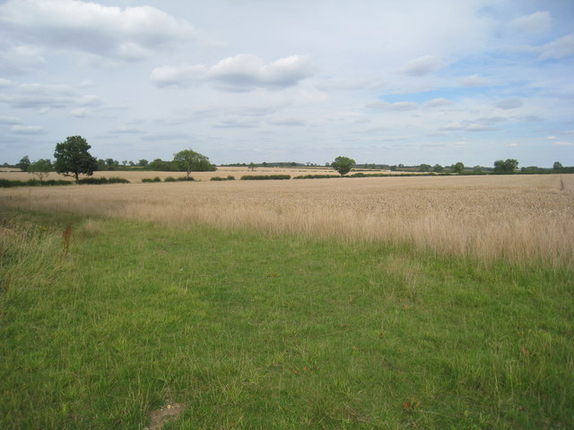 View from Sapperton South Wood