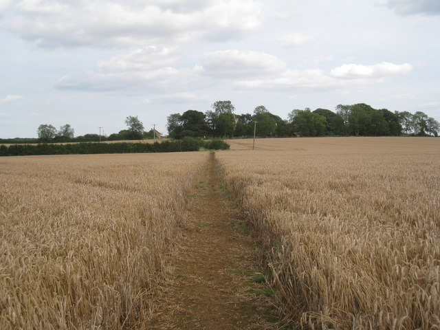 Footpath to Sapperton