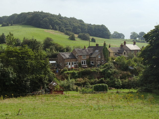 Mill Green and Thorphill Wood