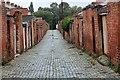 NZ2815 : Back Lane (looking north), Hope Town, Darlington : Week 35