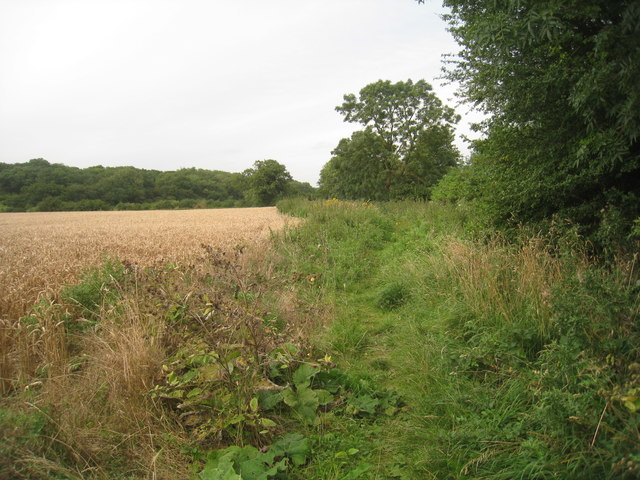Footpath to Newton