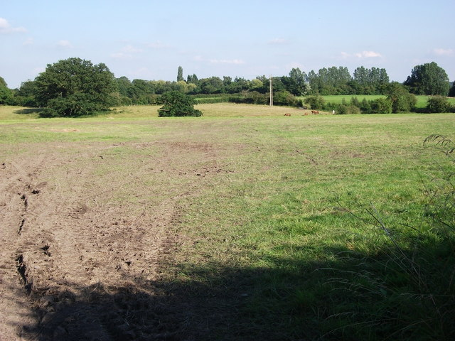 Field east of Edge Lane, Blackford Hill