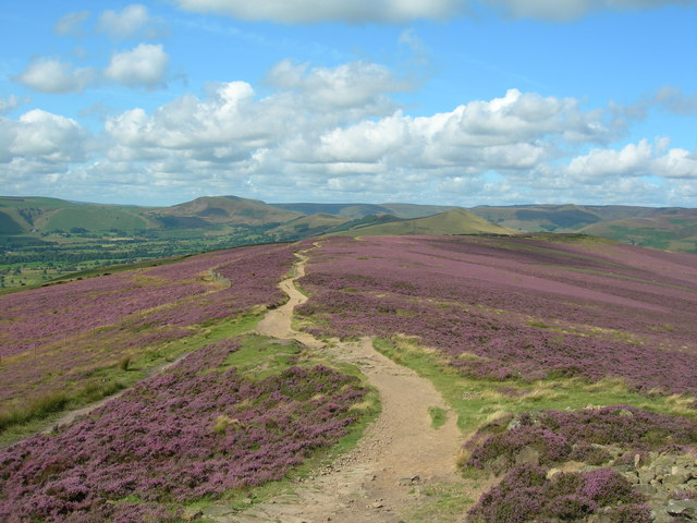Win Hill in Bloom